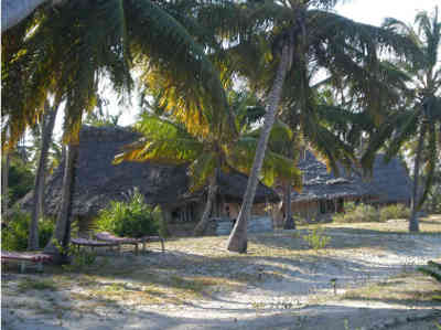 Emayani Beach Lodge - Pangani