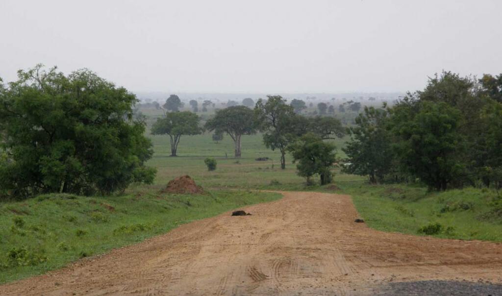 Zuidelijke parken van Tanzania: Mikumi NP, vanaf de TranZam highway.