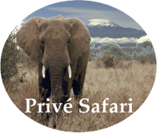 Logo PriveSafari.com