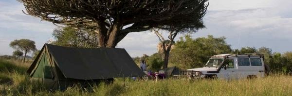 Exclusieve Safari Tanzania
