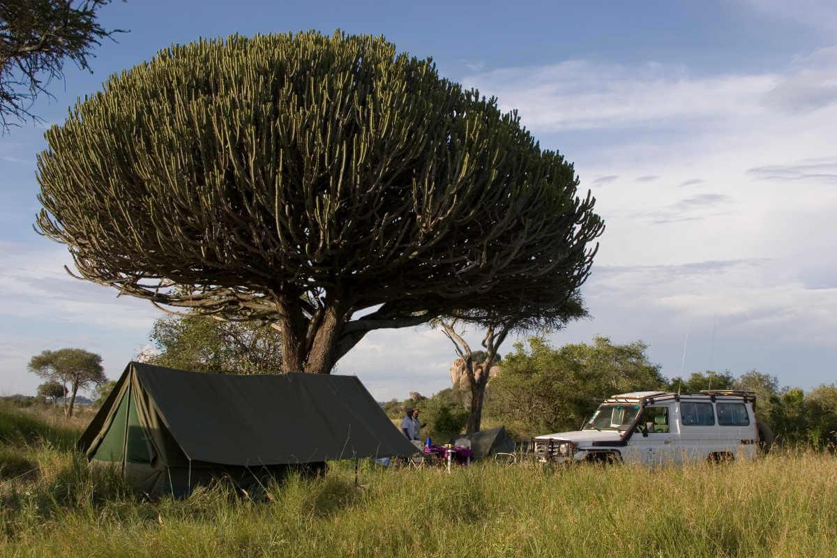 Kamp in de Serengeti, Tanzania