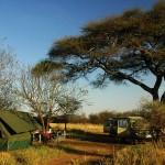 Tent safari Tanzania op Serengeti specioal campsite