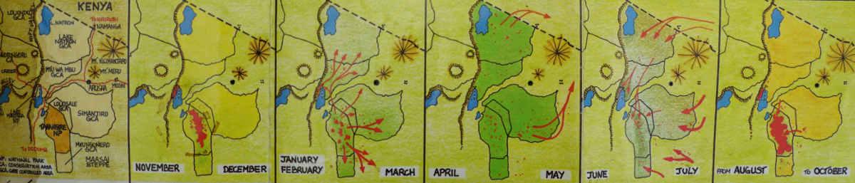 Tarangire Migration