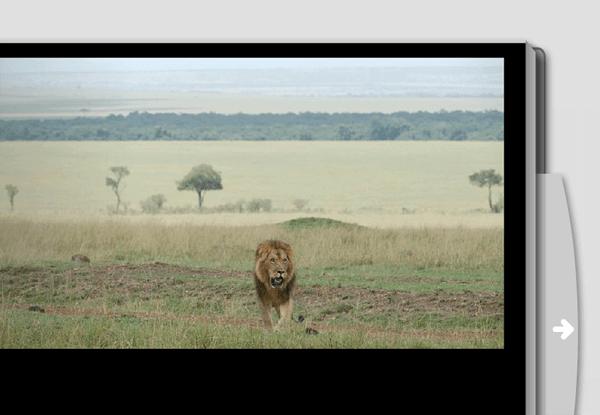 Fotoverslag safari Kenia en Tanzania - Linda de Vries